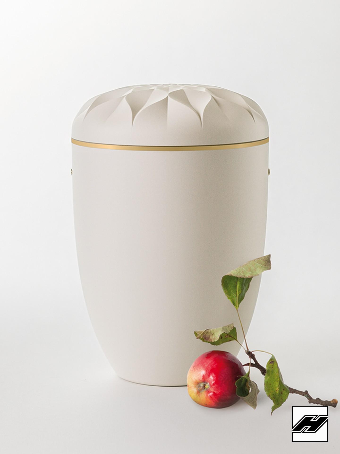 Urne Apfelblüte cremeweiß
